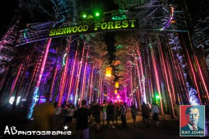 The Electric Forest